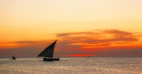 Zanzibar1