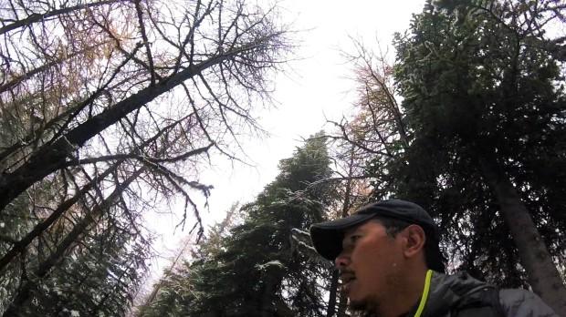 a-me-hike-3