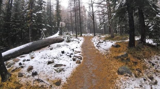 a-me-hike-4