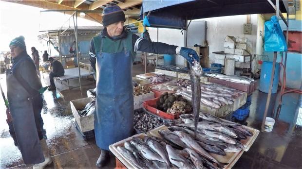 FishMrkt